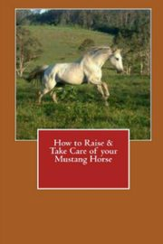 How to Raise & Take Care of Your Mustang Horse, Stead Vince